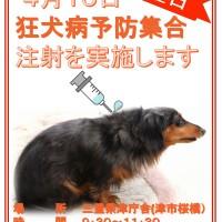 ポスター PDF